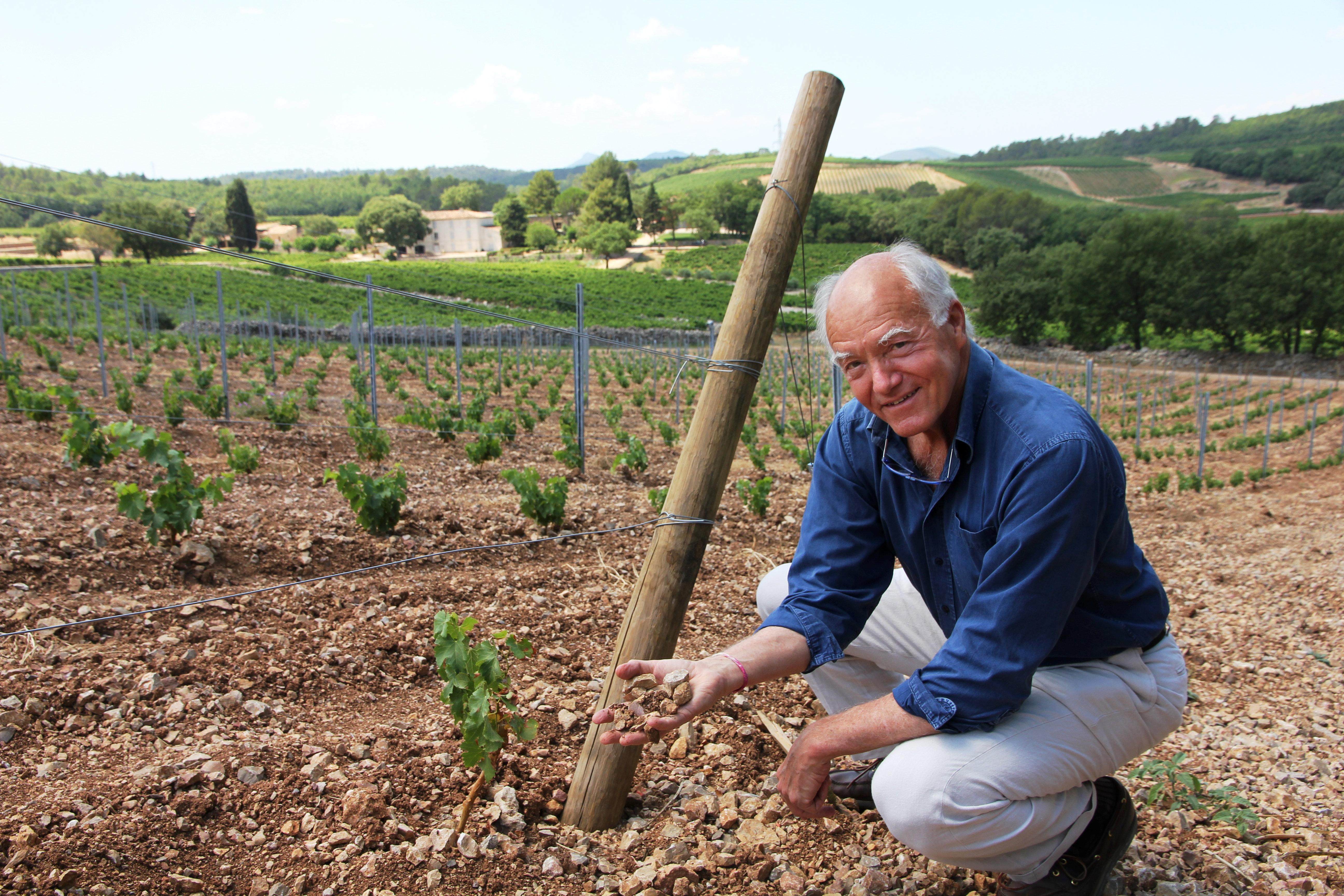 Rosévin fra Provence. Her er en rimelig toppvin