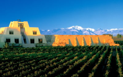 Catena Zapata: Pyramidal vinsuksess i Mendoza