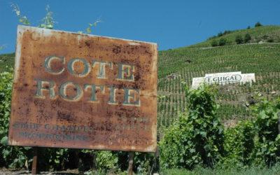 Her er 50 gode viner i Vinmonopolets marsnyheter