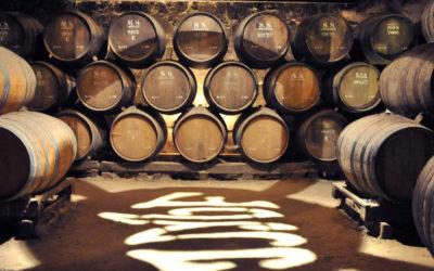 Periquita – Vinen som kom fra fortiden