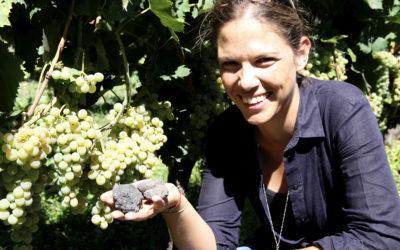 Leken toppvin fra Etna