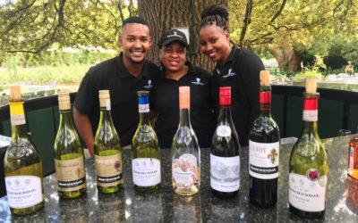 Sør-afrikansk vin i krise. Men du kan hjelpe